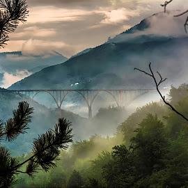 Tara bridge by Bojan Kuburovic - Buildings & Architecture Bridges & Suspended Structures ( clouds, montenegro, foggy, arhitecture, nature, fog, trees, bridge, landscape, pine )
