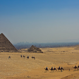 Egyptian pyramids by Andrey Nickel - Buildings & Architecture Statues & Monuments ( ancient, giza, pyramids, camels, egypt )