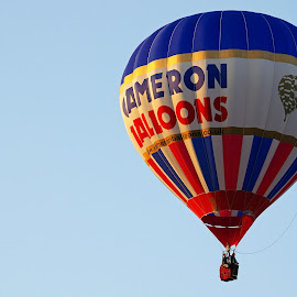 Cameron Balloon by Ingrid Anderson-Riley - Transportation Other