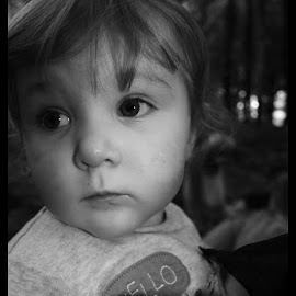 Cali by Aaron White - Babies & Children Toddlers ( child, cali, daughter, toddler, portrait )