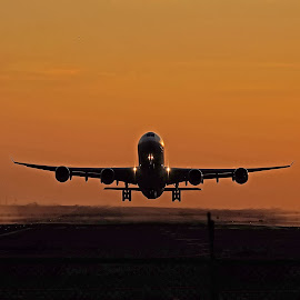 Over the Fence by Raymond Pauly - Transportation Airplanes ( golden hour, clear sky, airplane, sunset, airliner, take-off, airport )
