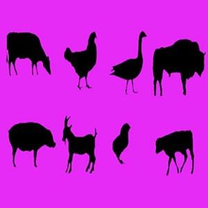 Дети: Учим Звуки Животных