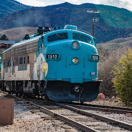 Verde Canyon Train by Dave Lipchen - Transportation Trains ( verde canyon train )