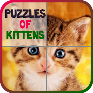 Puzzles of Kittens Free