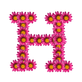 Alphabet - H by Dipali S - Typography Single Letters ( template, graphic, flora, decoration, letter, font, art, advertisement, type, sign, nature, quote, background, artistic, pink, flowers, design, floral )