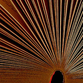 Pages of an open book. by Govindarajan Raghavan - Artistic Objects Other Objects