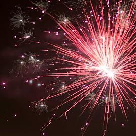 Cracker night by Trevor Smart - Abstract Fire & Fireworks ( nt, firecracker, red, australia, darwin, territory day )