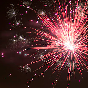 Cracker night by Trevor Smart - Abstract Fire & Fireworks ( nt, firecracker, red, australia, darwin, territory day,  )