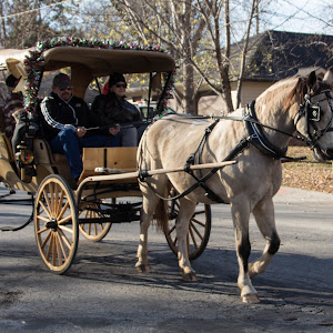 lawrence horse drawn parade 20.jpg