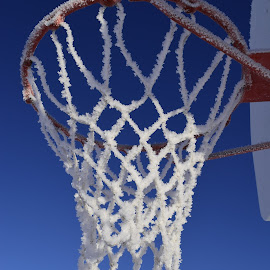 It's to cold to play basketball by Denton Thaves - Sports & Fitness Basketball ( frost )