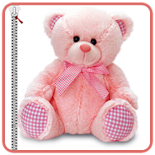 Cute Teddy Bear Zipper