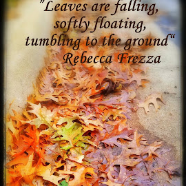 Leaves are falling by Anna Cole - Typography Quotes & Sentences