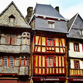 Old Britain's architecture by Ciprian Apetrei - Buildings & Architecture Other Exteriors ( exterior, traditional, brittany, historical, architecture )