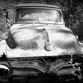 old truck by Paula Weston - Transportation Automobiles ( vintage, old truck,  )