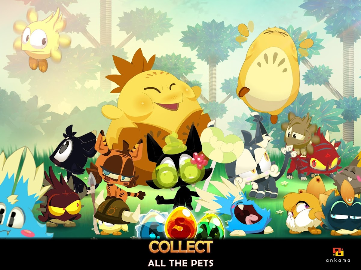 DOFUS Pets Screenshot 4