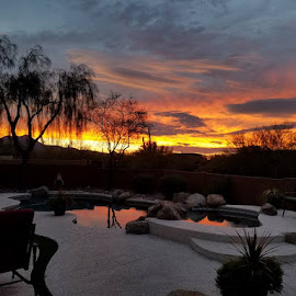 Pool of fire by Tom MostlyGerman - Buildings & Architecture Homes ( pool, sunset, arizona, backyard, flowers )