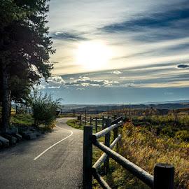 Angles of Sunrise by Steve Osmond - Landscapes Prairies, Meadows & Fields ( fence, alberta, blue hour, calgary, path, sunrise )