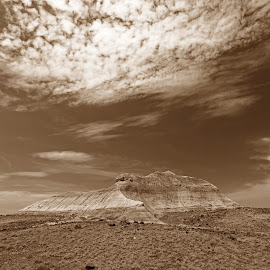 Petrified Forest National Park by Lynn Kohut - Landscapes Deserts ( sepia, national park, mountain, desert, america, landscape,  )
