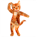 Dancing Talking Cat 1.2 Apk