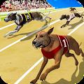 Free app Dog Crazy Race Simulator Tablet