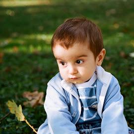 Autumn dream by Beata Jaszyk - Babies & Children Child Portraits ( child, autumn, child portrait, autumn colors, baby photography, baby boy )