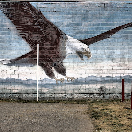 Eagle on Brick Wall by Christopher Barker - Painting All Painting ( eagle, canvas is brick wall, parking lot art )