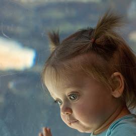 by Bonnie Filipkowski - Babies & Children Toddlers ( 2018, zoo )