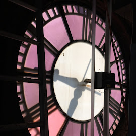 Inside the Clock Tower by Kristine Nicholas - Novices Only Objects & Still Life ( orange, old, building, wood, purple, vintage, clock, clock tower, town hall, translucent, architecture, tower, time, timepiece, wooden, hands, numbers, architectural, pink, town, antique, antiques, numerals )