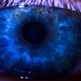 eye by Dario Dobranić - People Body Parts ( macro, blue, eyelashes, blue eyes, eye )