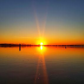 Sunset over Ptuj by Andreja Svenšek - Landscapes Sunsets & Sunrises ( water, sky, waterscape, sunset, fall, slovenia, sundown, sunshine, lake, leaves, ptuj, sun,  )