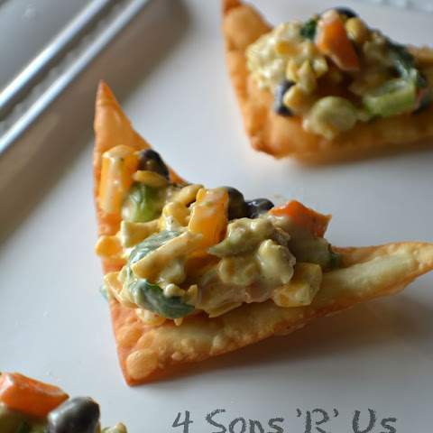 Southwestern Egg Roll Dip with Wonton Chips