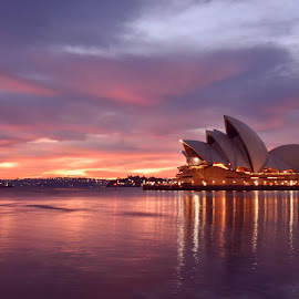 Sydney mornings  by Angela Taya - Novices Only Landscapes