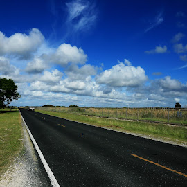 South Texas Backroad by Don Bates - Landscapes Travel ( clouds, highway, blue, green, sunny day )