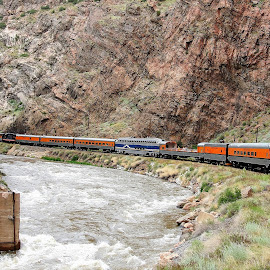 Royal Gorge Train by Janice Burnett - Transportation Trains ( water, gorge, royal gorge, colorado, train )