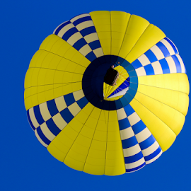 Yellow and Blue Above by Dave Dabour - Transportation Other ( warren county farmers fair, balloon festival, summer, balloons, friday, hot air balloons )