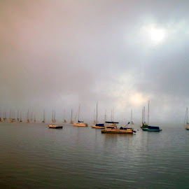 Sails in the fog by Doug Ireland - Transportation Boats ( water, foggy, morning, sailboat, hudson river )