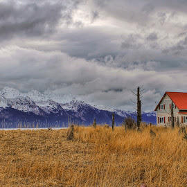 On The Bay by Patricia Phillips - Landscapes Travel ( cottages bay seward alaska )
