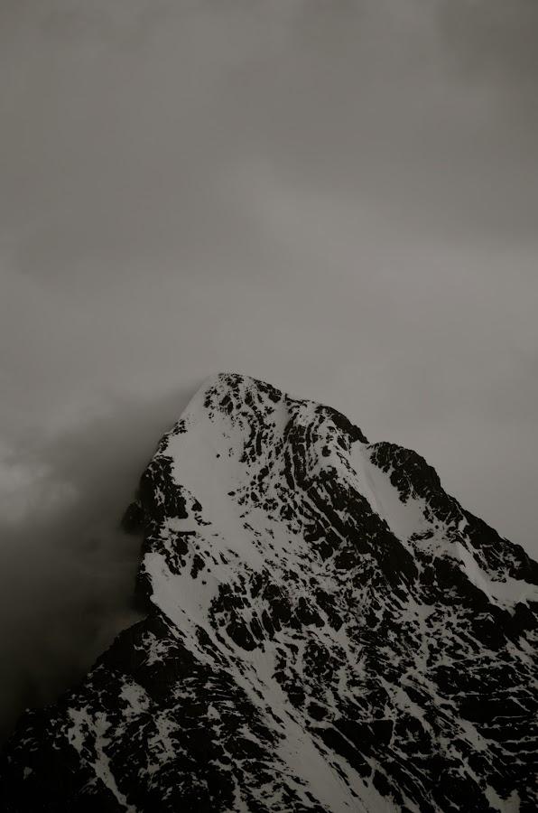 Eiger by Seamus Crowley - Landscapes Mountains & Hills ( clouds, mountain, peak, snow, switzerland, rock, eiger, storm, ridge, alps )