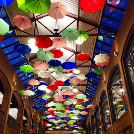 Umbrellas on The Ceiling  by Donovan Twaddle - Artistic Objects Other Objects ( umbrella umbrellas color colorful indoor ceiling skylights minneapolis minnesota calhoun square uptown )