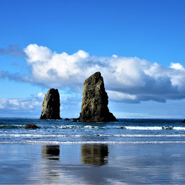 Oregon Coast by Kristine Smith - Landscapes Waterscapes