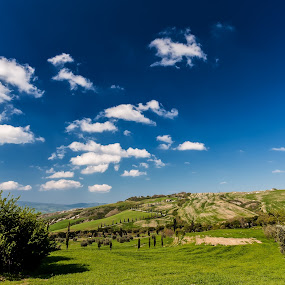Tuscany by Lieven Lema - Landscapes Prairies, Meadows & Fields ( toscane, tuscany, italia, eos 5d mkii, 2011 )