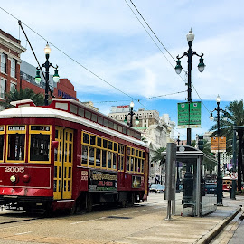Street Car on Canal Street, New Orleans by Judy Rosanno - Transportation Other ( new orleans, canal street, street car, public transit, transportation )