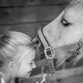 Kiss me quick by Vix Paine - Animals Horses ( love, kiss, blackandwhite, equine, girl, horses, family, pet, horse, animallove, stable )