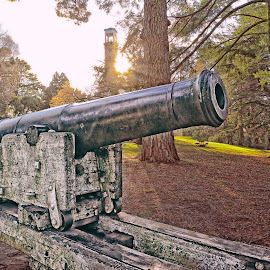 WWII canon by Michael Karakinos - City,  Street & Park  Historic Districts