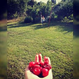 Summer by Iulia Radu - Nature Up Close Gardens & Produce