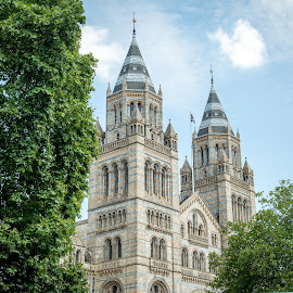 Natural History Museum - London by T Sco - Buildings & Architecture Public & Historical ( england, london, museum, united kingdom, uk, natural history museum, trees, building, architecture, arches )