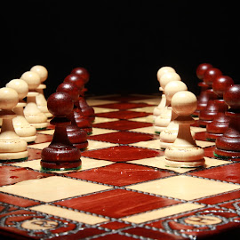 Pawns on a chess board by Peter Salmon - Artistic Objects Other Objects ( chess, line, board, light, pawns )
