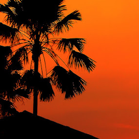 Sunset at Bekasi by Zlatan Dawamovic - Landscapes Sunsets & Sunrises