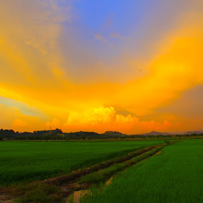 perai by Nasaruddin Naseh - Landscapes Weather