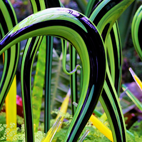 Chihully at the Garden by Leah Zisserson - Artistic Objects Other Objects ( sculpture, art, glass, georgia, chihully, garden,  )